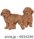 子犬 犬 いぬのイラスト 6654290