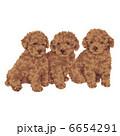 子犬 犬 いぬのイラスト 6654291