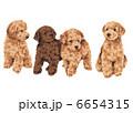子犬 犬 いぬのイラスト 6654315