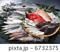 新鮮な魚 6732375