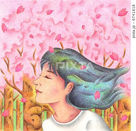 桜並木 6741818