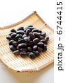 紫花豆 花豆 ベニバナインゲンの写真 6744415