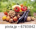 野菜 6783842