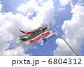 こどもの日 鯉幟 鯉のぼりの写真 6804312