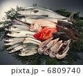鮮魚 6809740