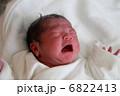 生まれたての赤ちゃん 6822413