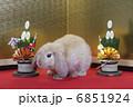 門松と金屏風でウサギのお正月 6851924