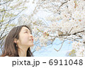 晴天の下、桜を見上げる綺麗な女性 6911048