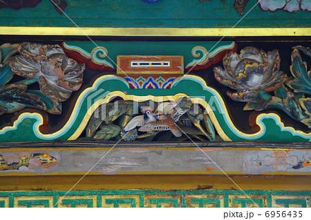 日光東照宮東回廊彫刻  6956435