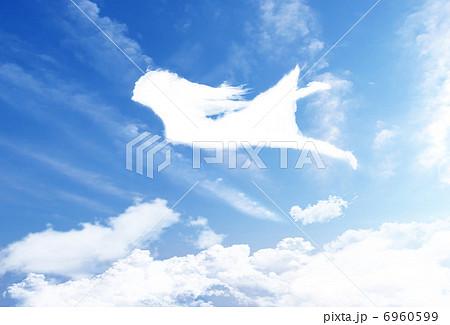 空を飛ぶ女の子のイラスト素材 6960599 Pixta