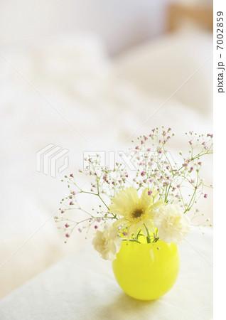 黄色い花瓶に入った花 7002859