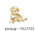 小犬 子犬 犬のイラスト 7017735