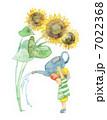 ひまわり 男の子 子供のイラスト 7022368