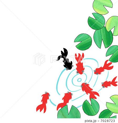 夏の風物詩 金魚のイラスト素材 7028723 Pixta