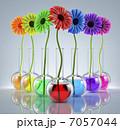 Genetic Experiments 7057044