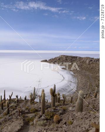 ウユニ塩湖 7128719