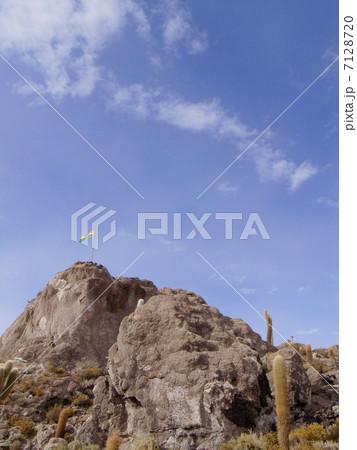 インカ・ワシ島 7128720