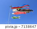 こどもの日 端午の節句 鯉のぼりの写真 7138647