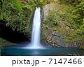 浄蓮の滝 7147466