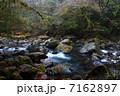 雨霧の菊池渓谷 7162897