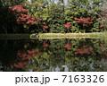 紅葉を写す池 7163326