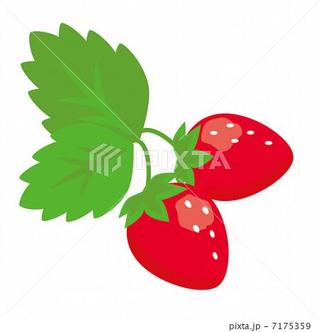 葉つきいちごのイラスト素材