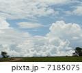 雲 7185075