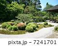 曼殊院の庭園 7241701