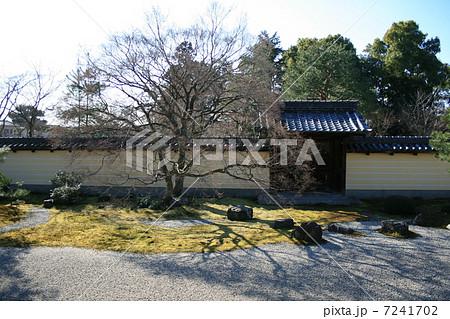 早春の等持院石庭 7241702