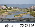 鴨川 賀茂川 川の写真 7252446
