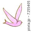 鳥 7255405