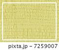 ステッチ フレーム2 7259007
