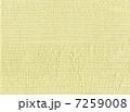 ステッチ 布 7259008