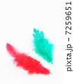 赤い羽根と緑の羽根 7259651