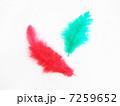赤い羽根と緑の羽根 7259652