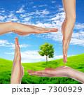 7300929