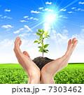 生態 エコロジー エコの写真 7303462