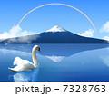 白鳥 7328763