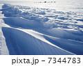 グレートスレイブ湖の雪原 7344783