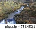 奥日光 自然 風景の写真 7384521