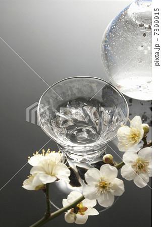 日本酒と梅の花の写真素材 [7399915] - PIXTA