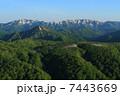 新緑の白神山地 7443669