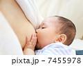 乳児 授乳 母乳の写真 7455978