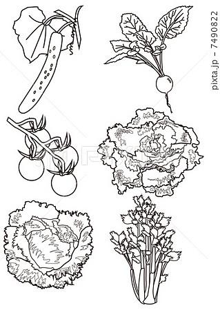 野菜セット塗り絵のイラスト素材 7490822 Pixta