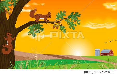 リス木登り秋夕暮れのイラスト素材 7504811 Pixta