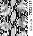 ヘビ柄 アニマル柄 パターンのイラスト 7552437