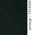 アニマル柄 模様 パターンのイラスト 7554094