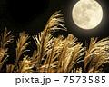 満月とススキ 7573585