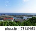 城ヶ島 磯遊び風景 7586463