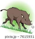 亥 イノシシ 動物のイラスト 7615931